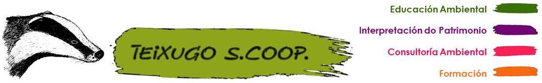 Teixugo Scoop logo
